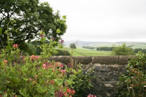 The Potting Shed Derbyshire