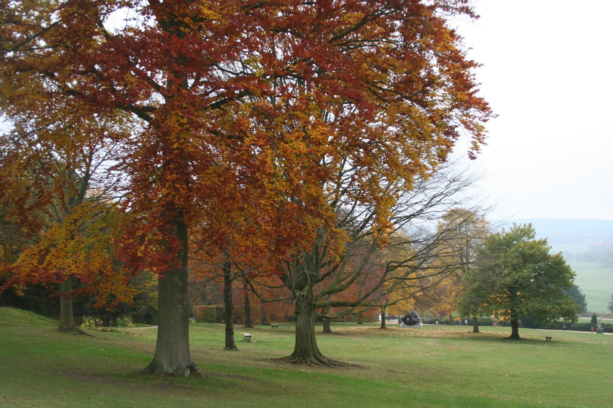 Chatswoth Gardens